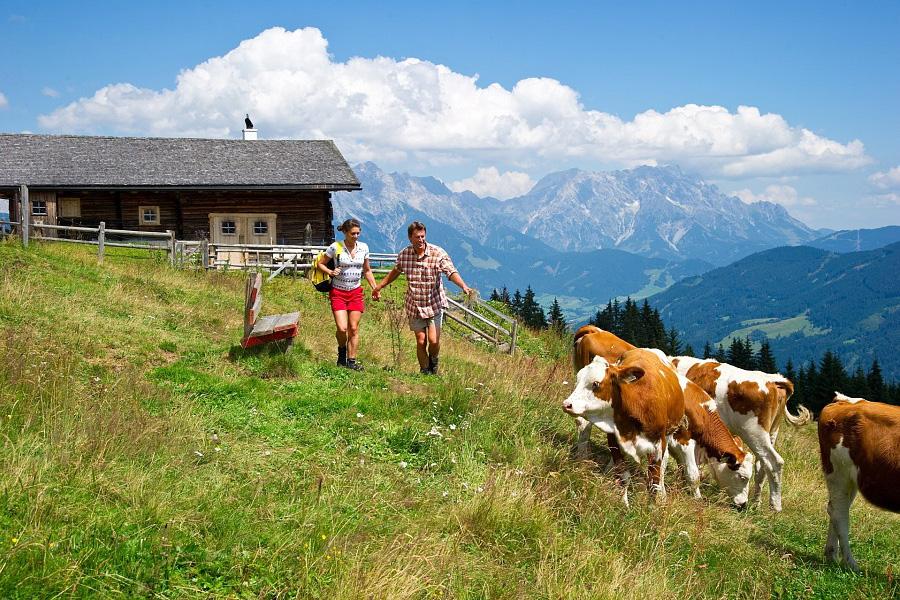 Sommer wandern Maishofen | Pension Alpenrose - Maishofen