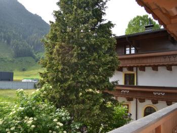 Carrousel Zimmer page | Pension Alpenrose - Maishofen